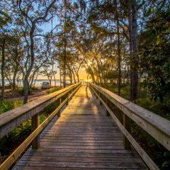 Hammock Bay Boardwalk to Bay Club