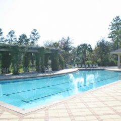 Swift Creek pool 2