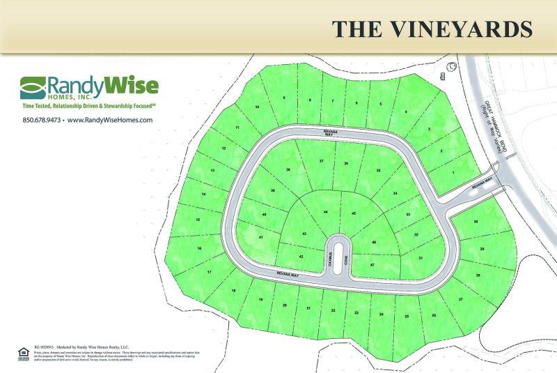 Vineyards at Hammock Bay Colored Neighborhood Site Plan
