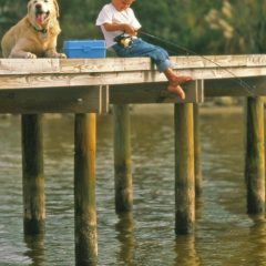 boy and his dog sitting on a pier